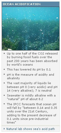 acid-11