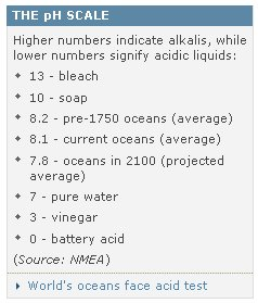 acid-22