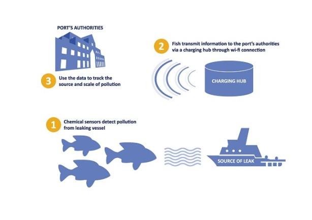 fishsensordiagram