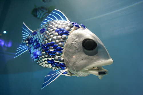 robotic-fish1
