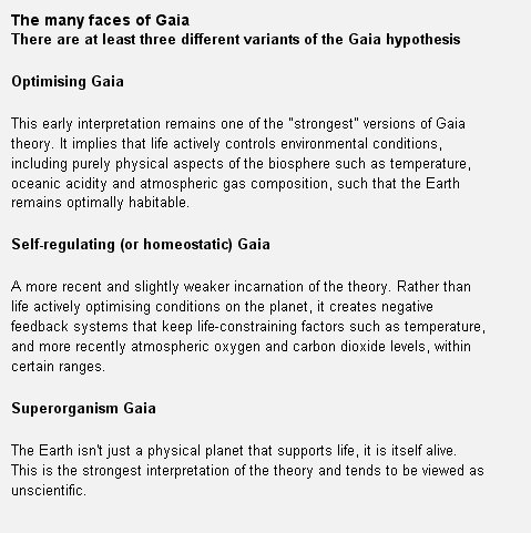 faces of gaia